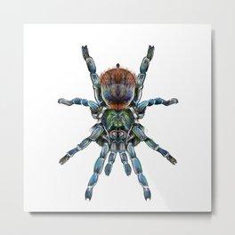 BottleGreen Blue Tarantula Metal Print