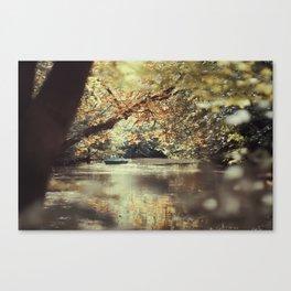 bois de vincennes (5) Canvas Print