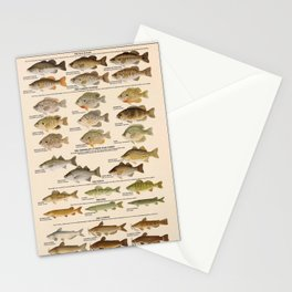 Illustrated Warmwater Game Fish Identification Chart Poster, Bass, Sunfish, Perch, Pike Stationery Cards