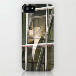 Look through any window iPhone Case