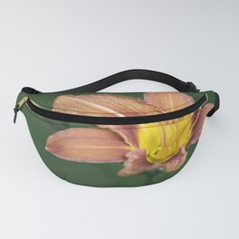 Affectuesement Lily Fanny Pack