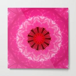 Pink Berry Metal Print