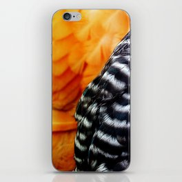Barred and Buff iPhone Skin