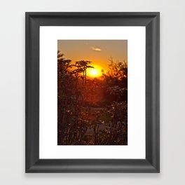 flower sunset  Framed Art Print