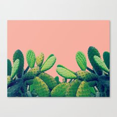 Cactus III Canvas Print