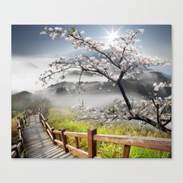 Japanese Cherry Landscape Canvas Print