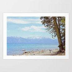 Tree by the lake Art Print