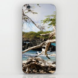 Scenic Shore iPhone Skin