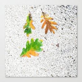Rainy Autumn Leaves on White Snow Terrazzo Canvas Print