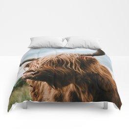 Scottish Highland Cattle - Animal Photography Comforters