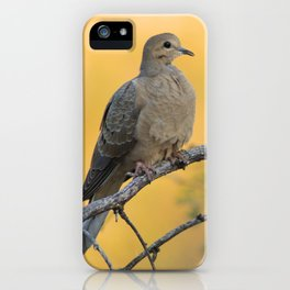 It was a beautiful mourning, right dove? iPhone Case