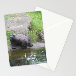 Gorilla Drinking Water Stationery Cards