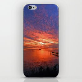 What Maryland Does Best iPhone Skin