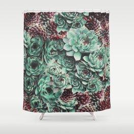 Succulent Sempervivum Plants Shower Curtain