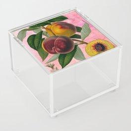 Vintage Botanical Collage, Bradford Peach Acrylic Box