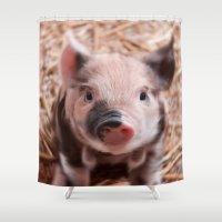 piglet Shower Curtains featuring Sweet piglet by MehrFarbeimLeben