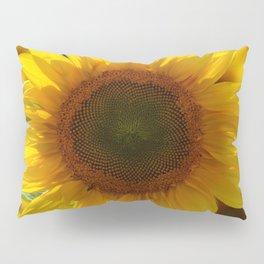 In the sun Pillow Sham