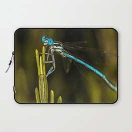 Common Blue Damselfly Laptop Sleeve