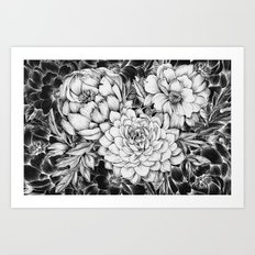Dahlias & Peonies Black Art Print