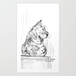 Cats from shelter #1 Art Print