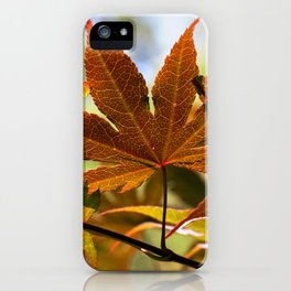 Japanese Maple Leaf iPhone Case