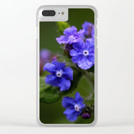 Omphalodes verna - JUSTART © Clear iPhone Case
