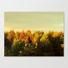 Summer Gold Canvas Print