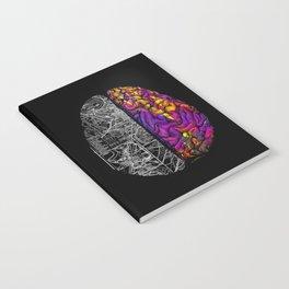 Ambiguity Notebook