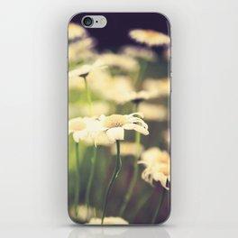 Wild Daisies iPhone Skin