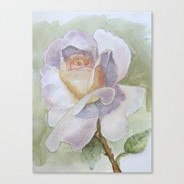 White Rose Watercolor Canvas Print