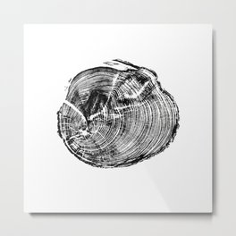 Scotts Pine Metal Print