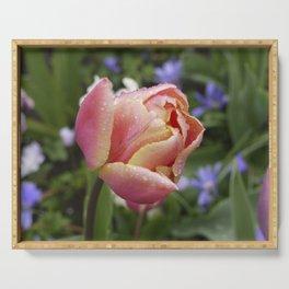 Tulip with soft orange colors I Dewdrops I Love I Photography I Fine art Serving Tray