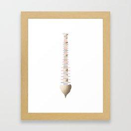 Lovely Spine Framed Art Print
