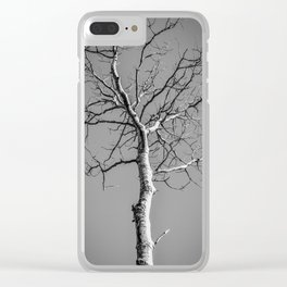 Bare Tree in the sky Clear iPhone Case