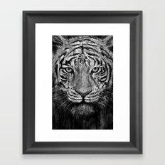 Tiger Black & White Framed Art Print