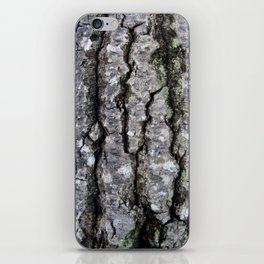 Bark in the Maine Woods iPhone Skin