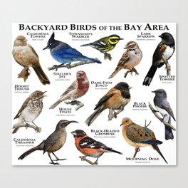Backyard Bird of the Bay Area Canvas Print