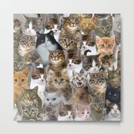 Kitty Cat Faces Pattern Metal Print