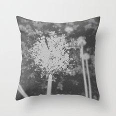 BW Spring Throw Pillow