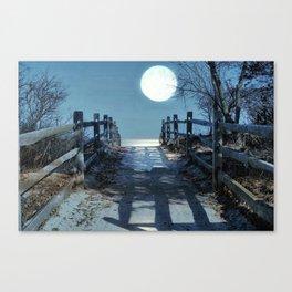 Under The Moonbeams Canvas Print