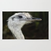 ostrich Area & Throw Rugs featuring Ostrich, Bird by Raymond Earley