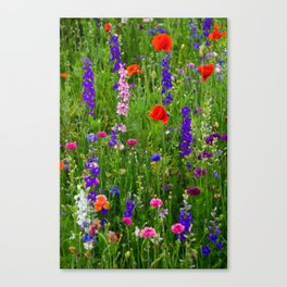 Close-up Wildflowers Canvas Print