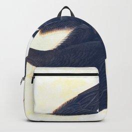 Sooty Tern John James Audubon Scientific Illustration Birds Of America Drawings Backpack