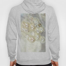 Shimmery Pearly Abalone Shell Hoody