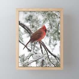 Wet Snow Cardinal (vertical) Framed Mini Art Print