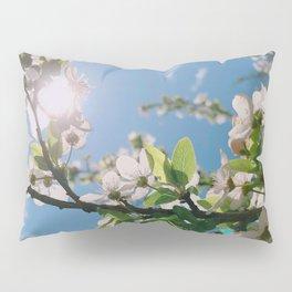 this colors --- love Pillow Sham