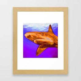 Painted Shark, Orange Framed Art Print