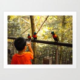 Feeding parrots at a birdpark Art Print