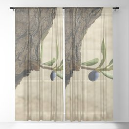 Olive branch Sheer Curtain