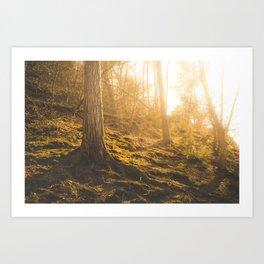 The Light of Life Art Print